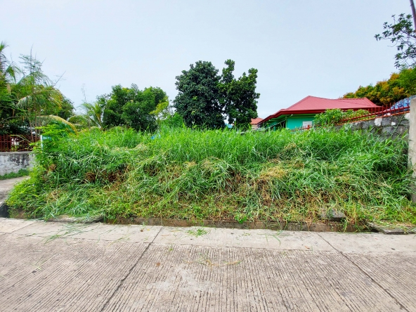 lot-for-sale-ruby-subdivision-catalunan-grande-davao